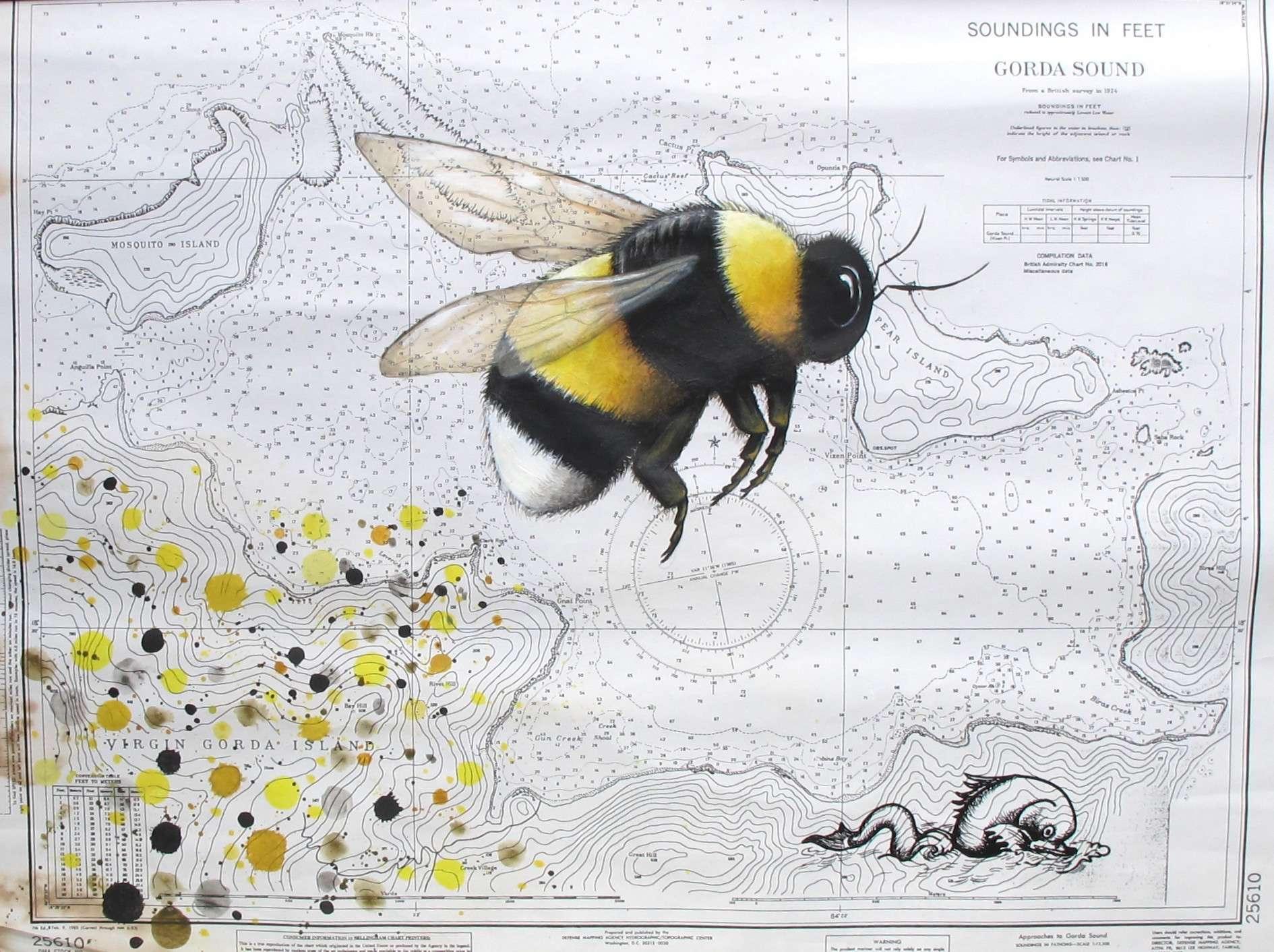 Into Uncharted Waters Bumblebee